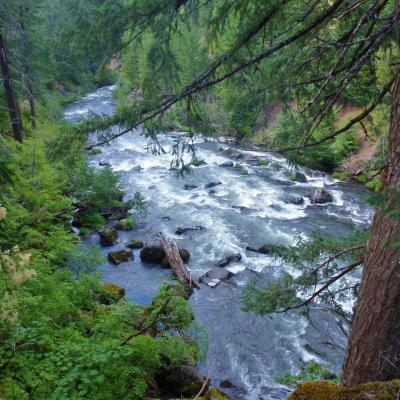 005- nombreuses rivières