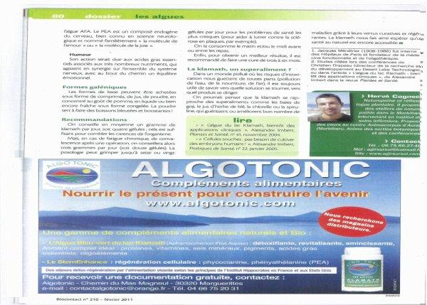 article scientifique 3.jpg