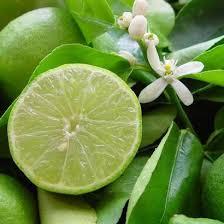 Essence de citron vert