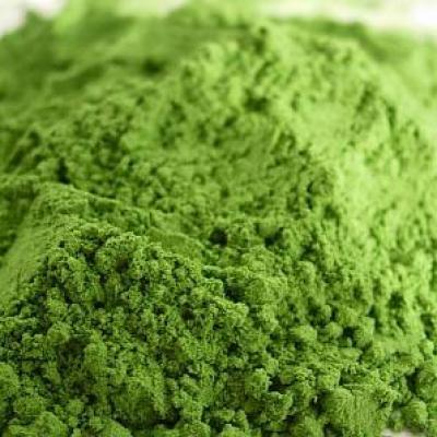 Klamath algae