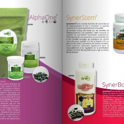 Synerj diapo catalogue2